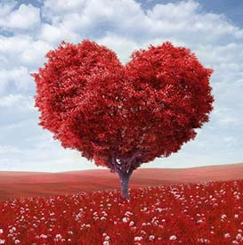 Heart Tree with Love