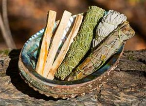 Smudge Herbs in Shell